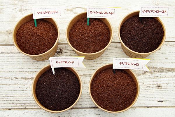 カルディの人気コーヒーおすすめランキング