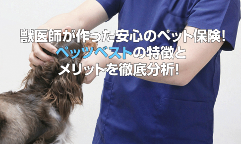 獣医師が作った安心のペット保険!ペッツベストの特徴とメリットを徹底分析!