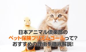 日本アニマル倶楽部のペット保険プリズムコールって?おすすめの理由を徹底解説!