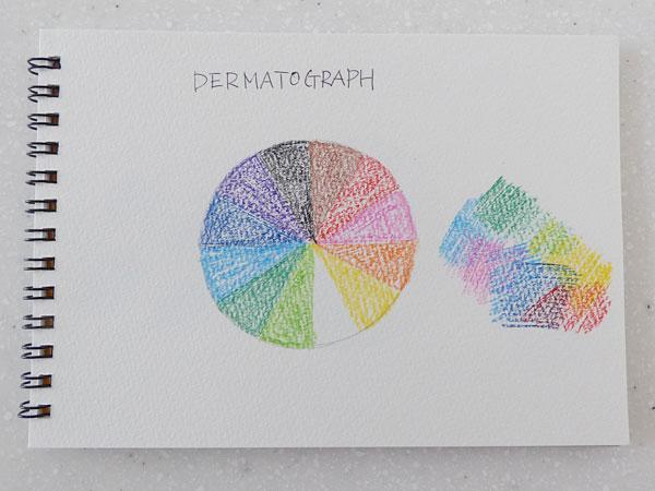 三菱鉛筆 色鉛筆 油性ダーマトグラフ12色